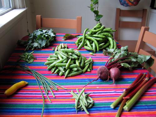 This week's crop of veggies.